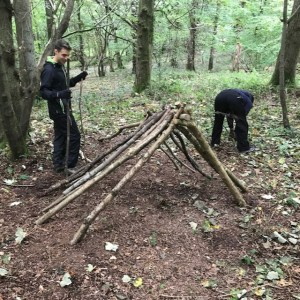 Bushcraft shelter construction - initial stage